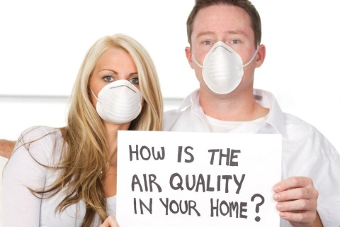 How the Improve the Quality of Your Indoor Air Picture