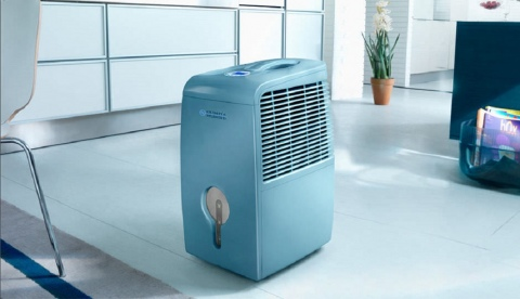How to Find the Right Dehumidifier for Your Home Picture