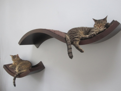 How to Keep Cats From Scratching Furniture Picture