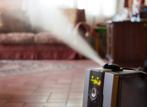 Why a Humidifier can Improve Your Health